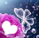BUBBLE ROSE