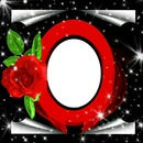 Shelina02 rosa
