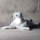 bébé phoque