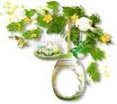 fleurs pâques
