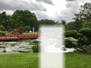 foto en jardin