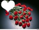 Gérbe de roses rouge