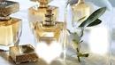 kolaż perfumy