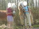 le cheval mon amie