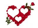 coeur en rose