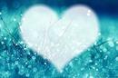 rosée d'amour