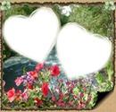 2 photos fleur coeur iena