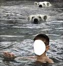 enfant ours