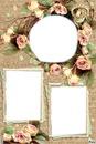 cadre fleurs 3 photos