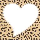 Un Amour De Leopard