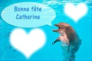 fête de saint Catherine