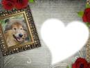 cadre chien coeur