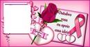 outrobro rosa