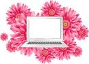 laptop a colores