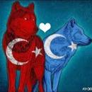 Doğu Türkistan & Türkiye