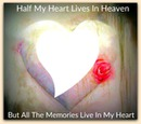 half my heart lives in heaven