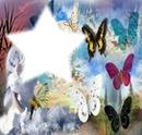 papillon étoile