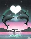 Les dauphin de l'amour !