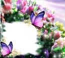 Cc Marco de flores
