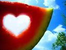 love++++Herz++++
