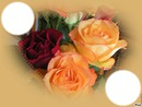 *Trois jolies roses pour toi Maman*