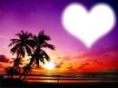 Palmier love