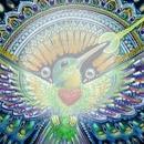renewilly colibri