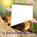 franco leoni