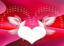 2 pigeons d'amour