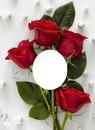 tu eres mi rosa