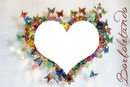 coração borboleta