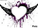 coeur lover