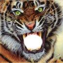 que me coma el tigre