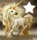 !! Licorne !