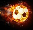 EM Fußball 2016Rp