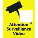 attention surveillance video