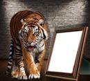 le tigre au portrait
