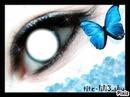 yeux bleu