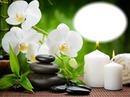 Zen-orchidées-bougies