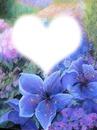 la tete dans les fleurs