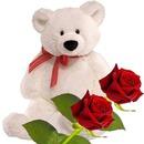 ours peluche blanc avec 2 roses 2 photos
