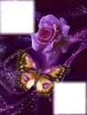 les fleurs et papillons