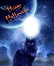 Cc Happy Halloween
