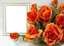 Růže, narozeniny