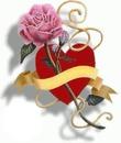 Coeur & Rose
