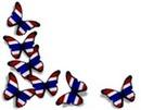 Tâches de papillons