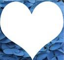 coeur fleurs bleu