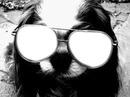 Doggy Glasses