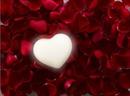 flores y corazon