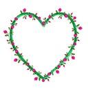 coração de gotas